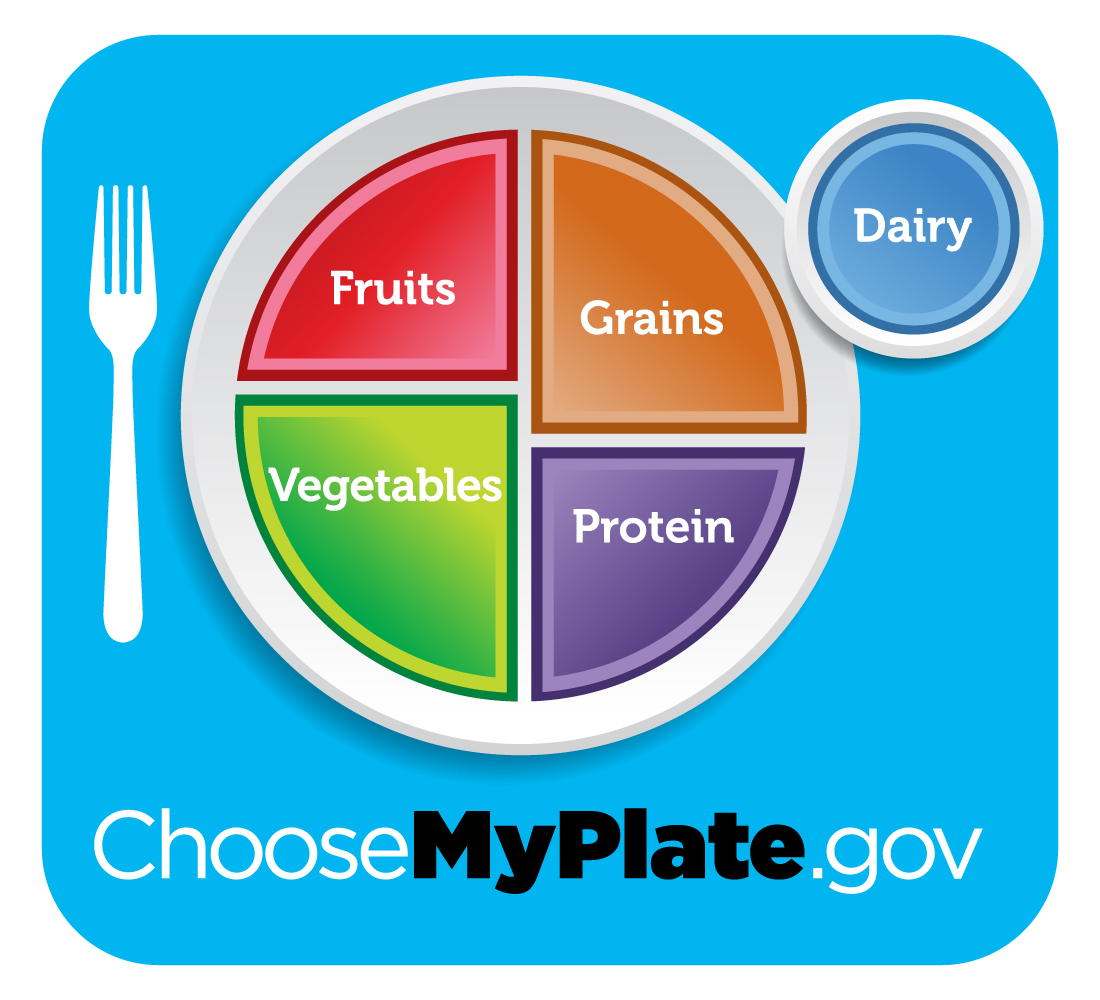 My plate, showing the portion size of fruits, grains, vegetables, protein, and dairy